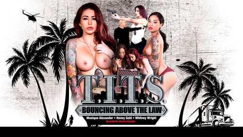 Digital Playground: Whitney Wright - T.I.T.S: Bouncing Above The Law (1080p)