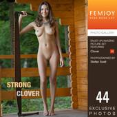 Clover - Strong 09-29-q6r9i17nal.jpg