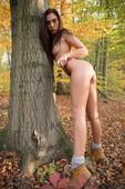 Sabrisse-Falling-Leaves-11-18-26s6qtr26z.jpg
